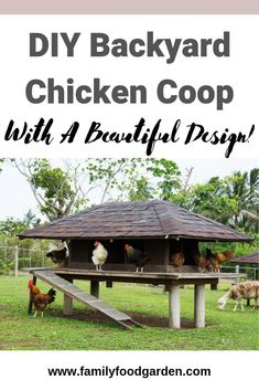 At the point when Hubby Designed Our New Chicken Coop For Our New Homestead, He Designed It To Fit 30 Chickens. It Was A Large Roaming Space Underneath Because We Get A Lot Of Snow During The Winter Months. Diy Chicken Coop D Diy Chicken Coop Plans, Chicken Coop Designs, Backyard Chicken Coops, Chickens Backyard, Types Of Chickens, Raising Chickens, Cedar Shakes, Chicken Breeds, Homesteading