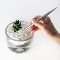 Mini zen garden - perfect to clear your head throughout the work day