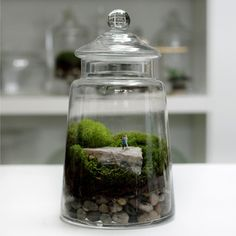 How cute quarkie and creative this is, would totally find a spot for this in my house... Love the unexpected...Crafting his perfect woman from Italian marble, this master sculptor chips away in the Masterpiece Terrarium by Brooklyn-based Twig Terrariums. This unique terrarium is sure to leave an impression!