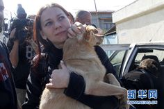 Dog adoption story published by Xinhua