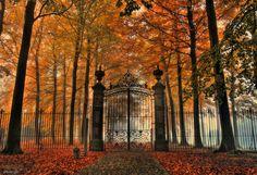 Art Nouveau fence @ town of Schoten, Antwerp province, Belgium. Photo: Mieke