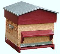 Cadre de ruche contenant des cellules royales