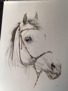 I love drawing horses
