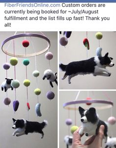 Border collie mobile