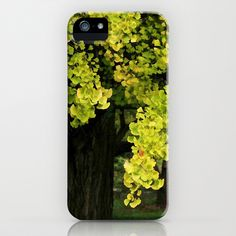 The Gingko Tree iPhone Case by Lyle Hatch - $35.00