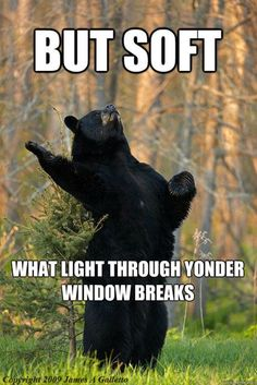 Sometimes internet things just strike you as particularly hilarious. This was one of those things. #ShakespeareBear