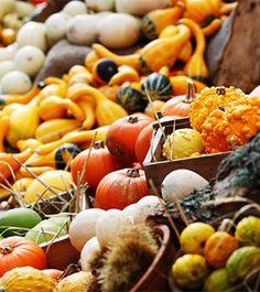 9 Fall Superfoods You Should Eat Every Day: Pumpkin, Rutabaga, Apple, Pomegranate, Brussels Sprouts, Kale, Tangerines, Butternut Squash, Cauliflower