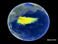 Water Radiation Map from Fukishima Daiichi heading towards Hawaii and the West Coast.;   --  Nuclear    Leaks, Rats and Radioactivity: Fukushima's Nuclear Cleanup Is Faltering  --  http://science.time.com/2013/05/01/leaks-rats-and-radioactivity-why-fukushimas-nuclear-cleanup-is-faltering/  --   http://science.time.com/2012/03/09/nuked-a-year-after-fukushima-nuclear-power-is-down-and-carbon-is-up/