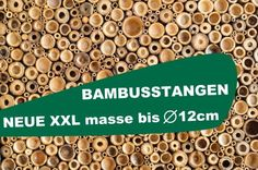 onlineshop bambusrohre