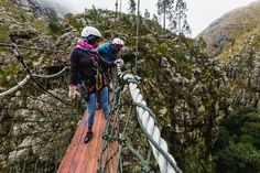 Zip Line in Elgin Valley, hour outside Cape Town. 4 hour tour of canyons via zip line Stuff To Do, Things To Do, Good Things, Self Goal, Africa Travel, Cape Town, Tours, Activities, Zip