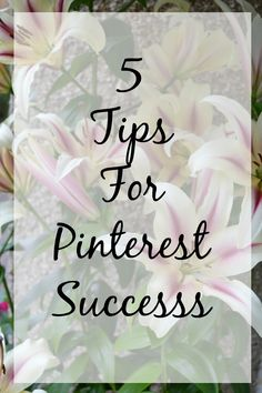 5 Tips For Pinterest Success