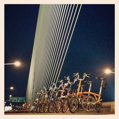 Brompton Nightriders
