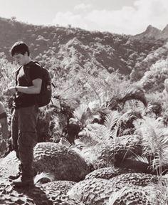 Josh Hutcherson in Journey 2 : The Mysterious Island The Mysterious Island, Journey 2, Hunger Games 3, You Have Been Warned, My Future Boyfriend, Josh Hutcherson, Boyfriends, Fangirl, Mystery
