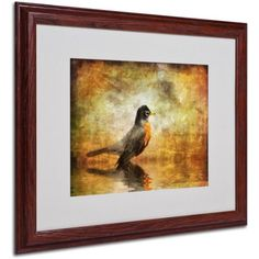 Trademark Fine Art The Robin by Lois Bryan, Wood Frame, Size: 16 x 20, Brown