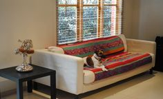 Sumaj - The ebullient colours weaving throughout Sumaj represents seeing and appreciating the infinite beauty of everything that surrounds you. Infinite, Weaving, Textiles, Couch, Colours, Furniture, Beauty, Home Decor, Settee