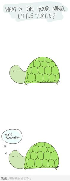 What's on your mind, little turtle?