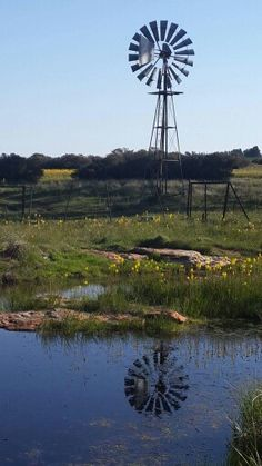 1 visitor has checked in at City Year South Africa. Farm Windmill, Windmill Decor, Nature Pictures, Beautiful Pictures, Africa Tattoos, City Year, Africa Flag, Old Windmills, Africa Destinations