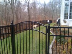 black fences and gates | Boothwyn, Pa.Black aluminum gate and fence for dogs.
