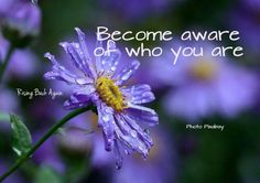 Become aware of who you are