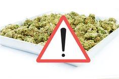 Schweiz: Neue Welle synthetischer Cannabinoide - Fake-Marihuana auf dem Markt In der Schweiz taucht seit einem halben Jahr immer häufiger mit synthetischen Cannabinoiden behandelter Nutzhanf auf dem ... Plastic Cutting Board, Wave, Hemp, Switzerland