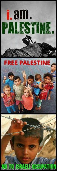 Sábado 22 Noviembre. Un día menos en la cuenta atrás de la ocupación Israelí sobre Palestina
