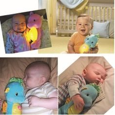 The Small Musical Toys Sea Horse Plush Baby Toys Free Shipping Cute Night Light Acoustooptical Baby Reassure 2 Colors $52.11