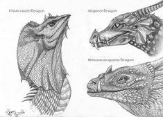 Dragon head studies by LarimarDragon on DeviantArt Dragon Head, Lion Sculpture, Study, Deviantart, Statue, Drawings, Studio, Investigations, Sketches