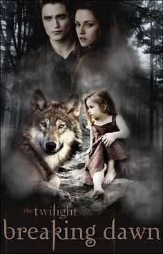 Gorgeous fan made poster for Breaking Dawn