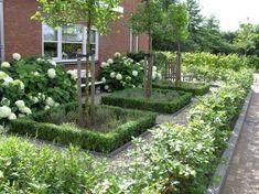 Buxusvakken met bomen in midden omringd door annabellen en haag