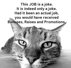 Is your job a joke as well? Then it's time to find one you'll actually love: jozoo.co.uk