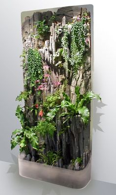 Go green in your bathroom with a Living Wall My shower plant wall indoor. I used WallyPockets for the vertical garden and a S. Succulents Garden, Garden Plants, Indoor Plants, House Plants, Indoor Vertical Gardens, Wall Garden Indoor, Garden Grass, Succulent Planters, Balcony Garden
