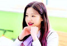 1 Gif, Japanese Girl Group, Cute Gif, The Wiz, Ulzzang Girl, Aesthetic Pictures, Baekhyun, Korean Girl, Have Fun