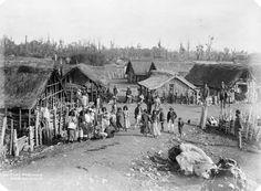 Parihaka, 1880s – Taranaki region – Te Ara Encyclopedia of New Zealand