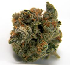 weed for sale,weed store usa ,cannabis online dispensary, Buy weed online,Buy marijuana online,Buy cannabis online,Buy OG Kush online,Buy Nembutal online, Buy cannabis oil online And lots more . Go to : www.realweedshop.com Call/Text: +1 513-392-0789