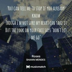 ROSES  ASDFGJLKPUT  THIS IS LIKE THE BEST SONG