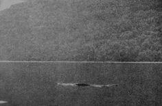 Nessie, the Loch Ness monster