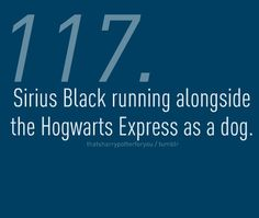 Sirius Black...by far my favorite character. I have never cried so much over a book as when he dies.