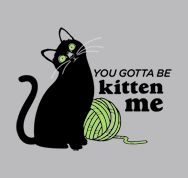 You Gotta Be Kitten Me @ snorg tees...i need it!