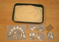 Print out your fossil puzzle pieces, bury them in rice and go on a fossil hunt with your kids. This is a fun dinosaur game that makes a great preschool activity. Try our dinosaur fossil game with your kids today. Dinosaur Games, Dinosaur Activities, Dinosaur Crafts, Dinosaur Fossils, Kids Learning Activities, Dinosaur Party, Fun Learning, Pool Activities, Dinosaurs Preschool