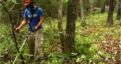 How to Create a Micro Food Plot for Fall [VIDEO]