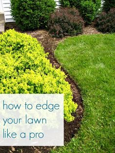 How to Edge Your Lawn Like  A Pro - @Jena McClendon {Involving Color and Home}