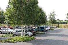 Car Park Design, Parking Design, Parking Lot, Car Parking, Public Realm, Landscape Architecture Design, Urban Landscape, Ecology, Street View