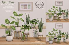 A new set of house plants for this week's Fifty Linden Friday. 3 included, with and without stands, texture-change planter copy/mod all 2 LI (except cheese plant in stand is The Sims 4 Pc, Sims Four, Sims Cc, Sims 4 House Building, Sims House Plans, Sims 4 Game Mods, Sims 4 Mods, Sims 4 Cc Furniture Living Rooms, Sims 4 Kitchen