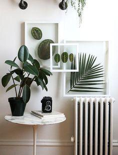 Verde é sempre bem-vindo na decoração. Por isso, listamos as imagens mais…