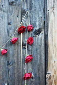 DIY Fresh Rose Garland Tutorial