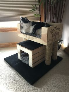 Kitty condo made with wine crate, wood crate, round wood posts, rope and carpet remanent. (Featuring Rocco The Cat)