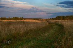 Сельский закат / 500px
