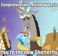 Rainbow dash is like... ummm NO. And I think it's supposed to say Fluttershy