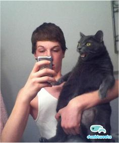 the cat's face is cracking me up.