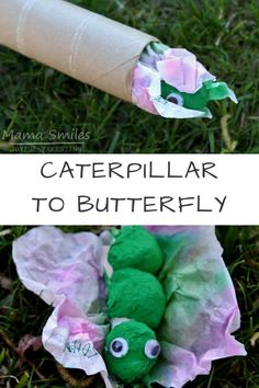 Delightful transformational caterpillar to chrysalis to butterfly craft for kids. Perfect for preschool or early elementary school aged children. via @mamasmiles